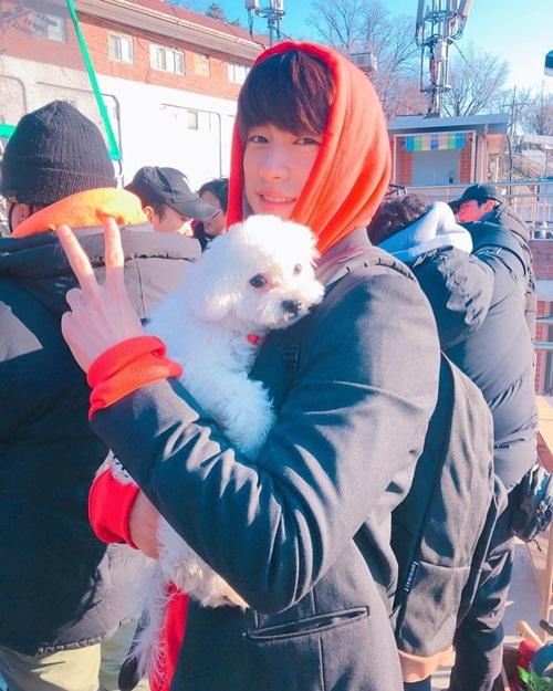 Jin Young (GOT7)
