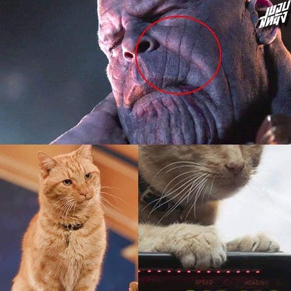 Trailer Avengers: End Game còn nóng hổi mà ảnh chế đã ngập tràn - 5