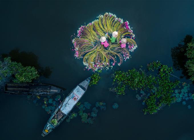 """<p> Đầu tháng 3, ba tác phẩm chụp hình ảnh Việt Nam liên tiếp được vinh danh tại cuộc thi SkyPixel.Skypixel là một trong những cuộc thi ảnh uy tín, vinh danh những tác phẩm chụp từ trên cao xuất sắc.</p> <p> Bức ảnh với tên gọi<strong> """"Flowers On The Water""""</strong><em>(Những bông hoa trên mặt nước) </em>của nhiếp ảnh gia Khánh Phan giành giải nhất tại hạng mục Fun (Vui vẻ).</p>"""