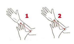 Trắc nghiệm: Phán chuẩn tính cách của con người qua độ dài cẳng tay