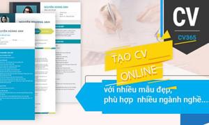 Tải hồ sơ xin việc miễn phí tại Timviec365.vn