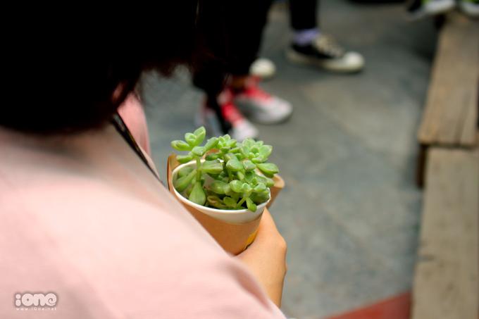 """<p> Đến với sự kiện, người tham dự sẽ được """"đổi đồ cũ lấy cây xanh"""". Những đồ nhựa không sử dụng như đồ điện tử, chai lọ nhựa, vỏ hộp sữa cho đến quần áo cũ khi đem đến sự kiện đều được đổi lấy cây xanh.</p>"""