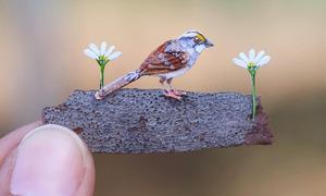 Mô hình động vật tí hon bằng giấy của nghệ sĩ Ấn Độ