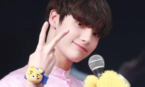 Nhan sắc đẳng cấp của loạt idol mang dòng máu lai ở Kpop