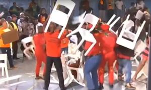 Nghị sĩ Nam Phi vác ghế choảng nhau trên truyền hình trực tiếp