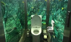 Nhà vệ sinh thủy cung độc lạ tại quán cà phê Nhật Bản