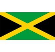 Bạn có nhớ màu chuẩn trên lá cờ của các quốc gia? (2) - 2