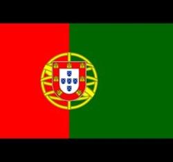 Bạn có nhớ màu chuẩn trên lá cờ của các quốc gia? (2) - 9