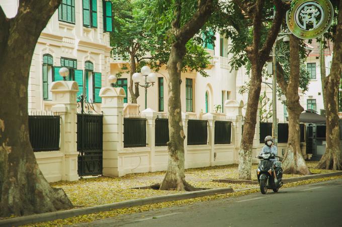 <p> Đầu tháng tư, lúc chuyển giao từ xuân sang hè, là khi cây sấu ở thủ đô bắt đầu thay lá.</p>