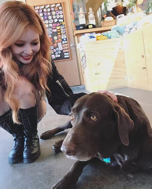 Hyun Ah vừa quay quảng cáo vừa tranh thú chơi với chú chó tình cờ gặp.