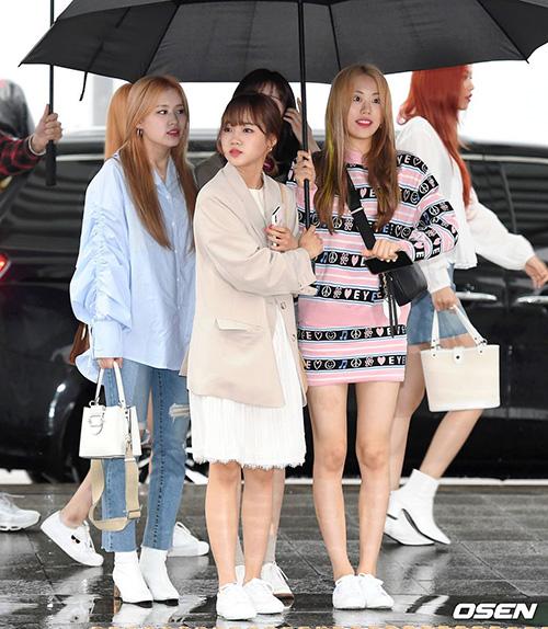 Weki Meki sẽ tham dự cùng sự kiện với Red Velvet ở Việt Nam. Hai thành viên nổi tiếng nhất là Yoo Jung (để mái) và Do Yeon, cả hai đều tham gia Produce 101 mùa 1.