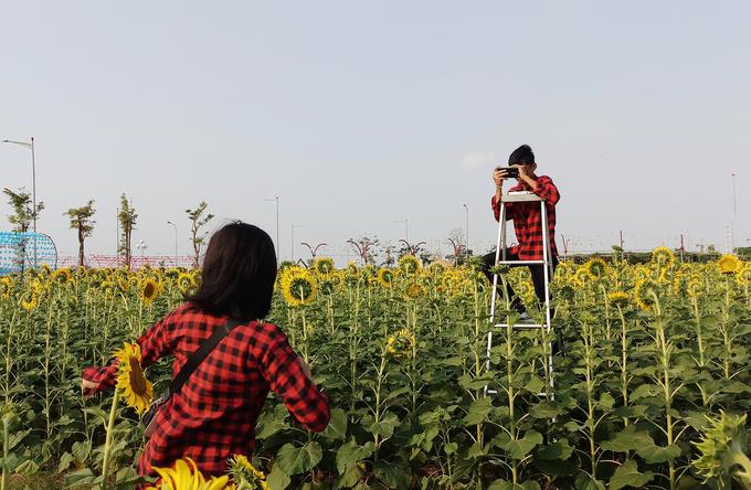 """<p> Lễ hội hoa hướng dương lần này có chủ đề """"Sunflower Smile - Nụ cười hoa hướng dương"""". Một phần doanh thu từ chương trình sẽ được trích làm quỹ từ thiện để hỗ trợ phẫu thuật tim cho trẻ em có hoàn cảnh khó khăn.</p>"""