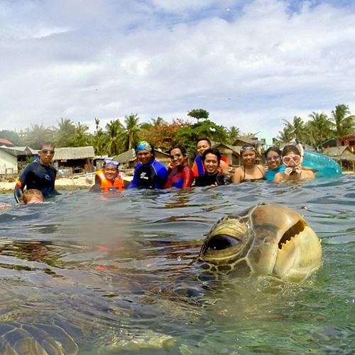 Chú rùa biển này tuy chỉ là khách không mời nhưng lại trở thành nhân vật chiếm sóng của cả bức hình.