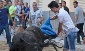 Nam thanh niên bị bò tót húc chết trong lễ hội ở Tây Ban Nha