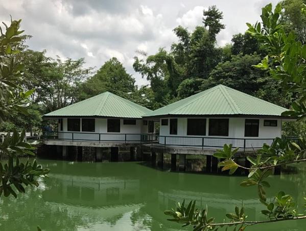 Khuôn viên bên trong khách sạn Ephrathah Farms ở Philippines.