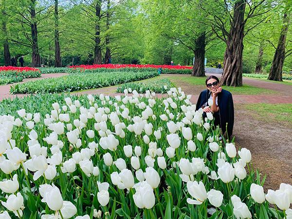 Võ Hoàng Yến rạng rỡ bên đồng hoa tulip đẹp như tranh vẽ.