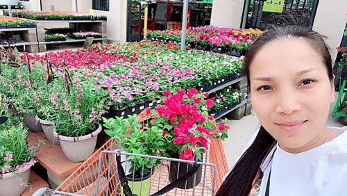 Khu vườn mini tràn ngập hoa tươi của Hồng Ngọc trên đất Mỹ.