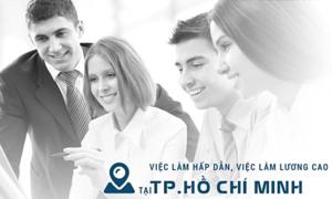 Timviec365 gợi ý cách tìm việc tại TP HCM