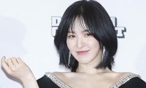 Thảm đỏ Dream Concert: Park Bom luộm thuộm, Wendy gây sốt nhờ nhan sắc