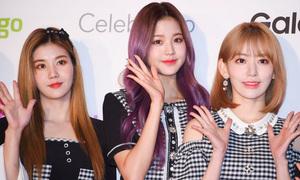 Thảm đỏ KCON 2019 hội tụ visual của những girlband đình đám