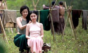Đạo diễn 'Vợ ba': 'Chúng tôi không sai, không phạm luật'