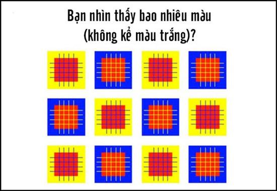 Bạn nhìn thấy bao nhiêu màu trong hình?