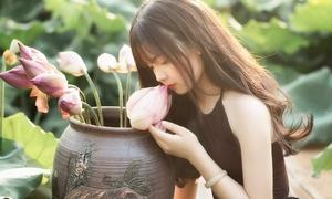 Thiếu nữ Hà thành khoe sắc bên sen cuối mùa