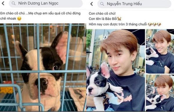 Tiếp đó, fan tiếp tục phát hiện Chi Dân - Lan Ngọc cùng sở hữu một chú cún cưng. Họ chụp nhiều ảnh về chú cún này kèm lời yêu thương chia sẻ trên trang cá nhân. Fan đồn đoán họ đang nuôi chung bé cún này.