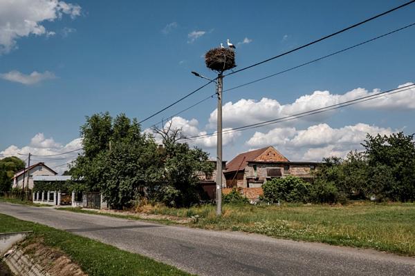 Ngôi làng Miejsce Odrzanskie có gần 300 cư dân.