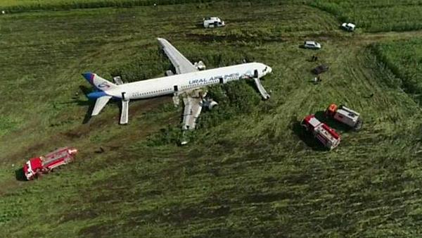 Máy bay hạ cánh bằng bụng xuống cánh đồng. Ảnh: TASS.