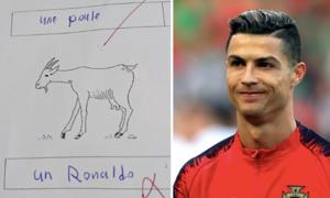 Cậu bé rớt kỳ thi vì chú thích ảnh con dê là... Ronaldo