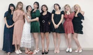 Fan 'rần rần' khi Twice xác nhận comeback tháng 9