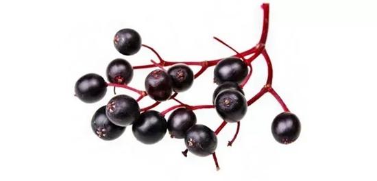 Từ vựng tiếng Anh về các loại quả mọng - 9