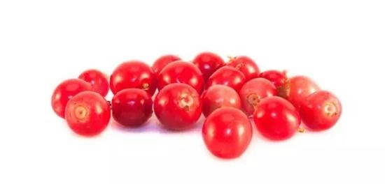 Từ vựng tiếng Anh về các loại quả mọng - 8