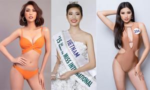 3 mỹ nhân có danh hiệu quốc tế vẫn thi Hoa hậu Hoàn vũ VN
