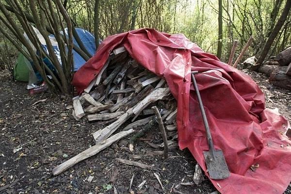 Khu rừng ở Pháp nơi nhóm người di cư đang trú ngụ.