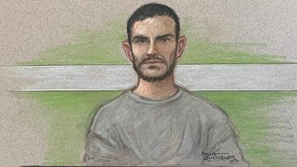 Robison xuất hiện trên video trực tuyến, mặc áo thun nhạt màu và không đưa ra phát biểu gì trong phiên tòa đầu tiên. Ảnh: BBC.