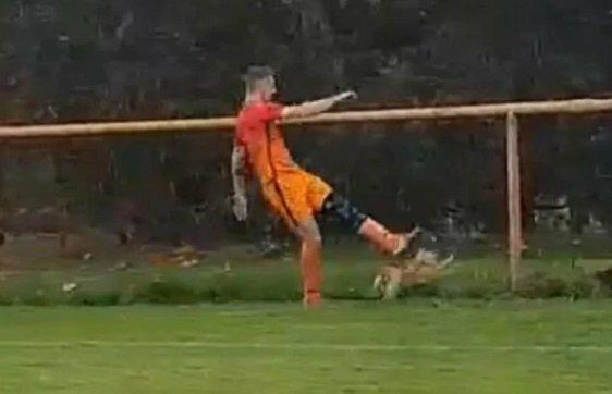 Cầu thủ Ivan Gazdek dùng chân đá một con gà ngay trên sân.