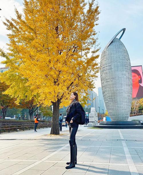 Hà Hồ đi Hàn Quốc mùa lá vàng.