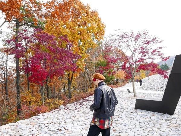 Su Ho đi ngắm cảnh lá vàng lá đỏ tuyệt đẹp.