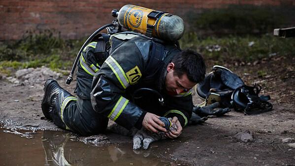 Lính cứu hỏa sơ cứu cho con mèo bị ngạt khói. Ảnh: RT.