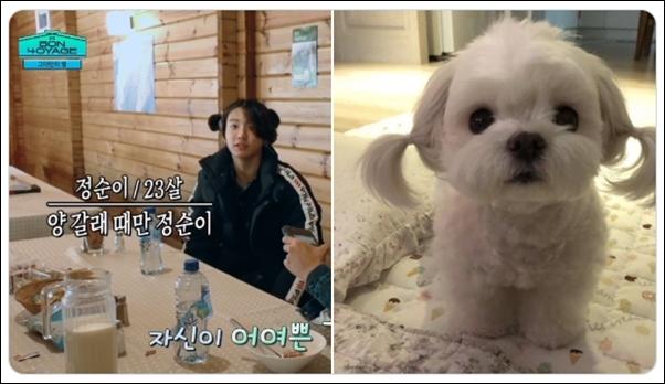 Jung Kook (BTS) gây cười với kiểu tóc na tra đáng yêu - 2