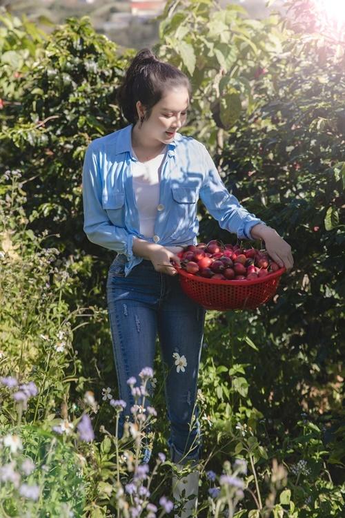 Cô trồng cà chua và nhiều loạinông sản để cung cấp nguồn thực phẩm sạch cho gia đình, bạn bè.