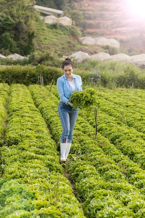 Ngoài nông trại trồng rau, trái cây, Lý Nhã Kỳ còn sở hữu resort triệu đô rộng 7.000 m2, cách trung tâm TP Đà Lạt 8 km.