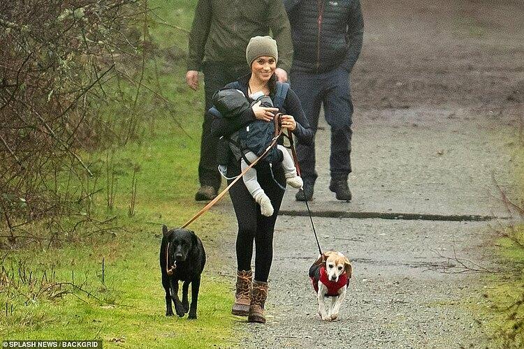 Meghan một mình chăm sóc cả con lẫn hai thú cưng trong suốt cuộc đi dạo trong rừng ở Canada sáng 20/1. Ảnh: Backgrid.
