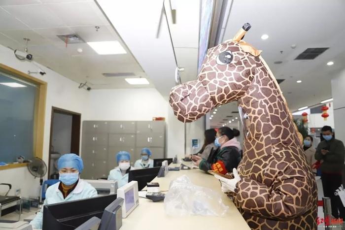 Hươu cao cổ gây chú ý khi đến bệnh viện.
