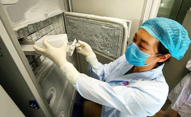 Gioăng trên cánh tủ lạnh lỏng lẻo ở phòng thí nghiệm Vũ Hán.