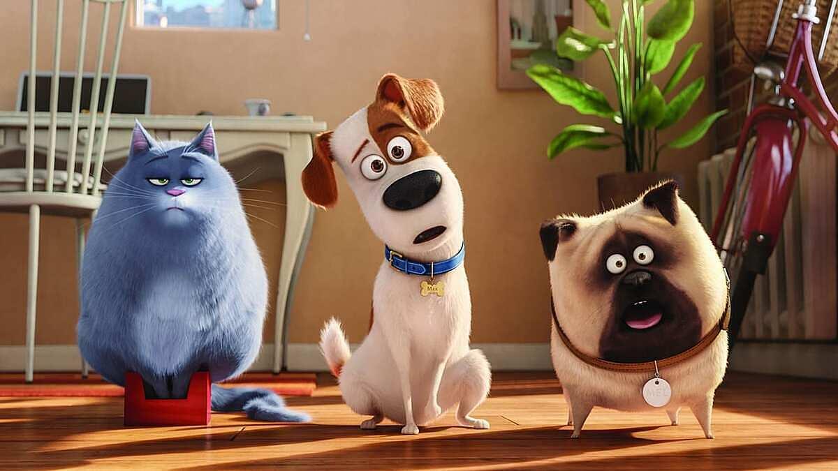Ở nhà trốn dịch xem gì: Cười xỉu với loạt phim hoạt hình thú cưng - 7