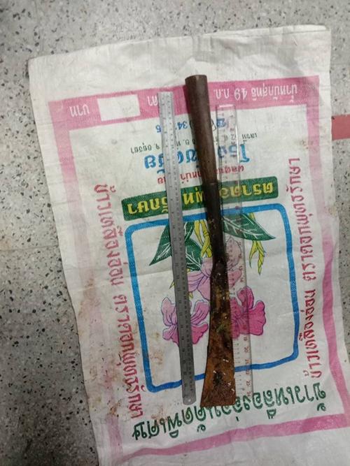 Con dao dài 60 cm làm hung khí gây án. Ảnh:The Nation/Asia News Network.