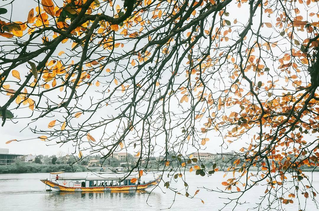 Góc bàng tạo khung cảnh lãng mạn bên bờ Bắc dòng Hương.